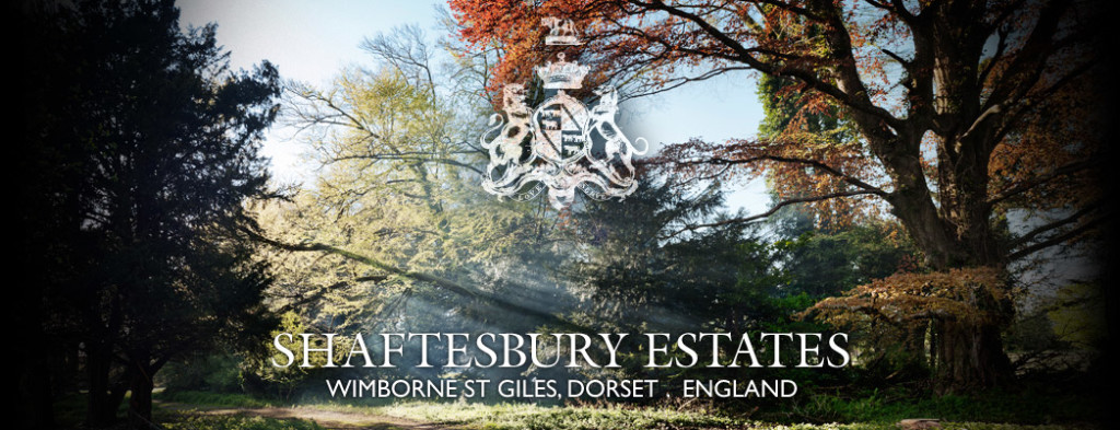 Shaftesbury Banner